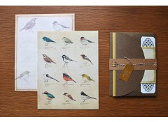 Illustrated Birds letter set (10)